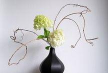 Garden: Ikebana / by Royce M. Becker