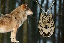 wolf / by SiberianArt by Amit Eshel