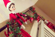 Miss Layla the elf on the shelf