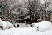 Winter Galore