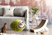 Pet Friendly Design / Create spaces that tailor to you - and your furry loved ones
