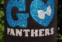 Carolina Panthers Galore