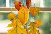 Fall/Autumn/Thanksgiving Ideas / by Rachel Norris