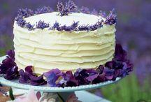 Chloe Bakes Cakes