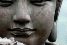 Buddha  / meditation, calm / by Rana Waxman
