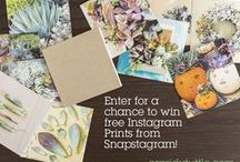 Snap Offers & Giveaways! / Don't miss your chance at winning free Instagram prints by entering our blogger giveaways and participating in our offers and promotions! / by Snapstagram