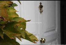 PamelaJayne Photography Marketing / Marketing for Advertising/Website enhancement photos etc..