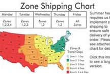 Village Candle Zone Shipping Notice / Insuring safe delivery of Village Candle Orders to high heat index areas.