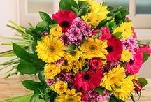 Spring Day Flowers and Gifts / Spring Day is the perfect excuse to send beautiful flowers and gfits to loved ones! See which ideas we like most!
