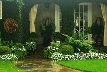 Landscaping / by Irene/upa K
