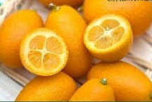 KUMQUAT.  / Kumquats, how to grow & what to do with them. :) / by Andrea Hyland