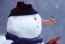 Snowman <3 / by Melanie Scouten