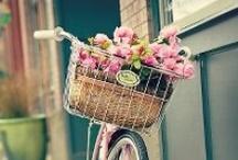 Bike Art / by Tracy Prater