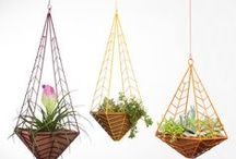 Outdoor/Garden / Everything you need to make your outdoors fabulous! / by Nellie Bellie (crafts, diy, recipes, minnesota, webdesign)