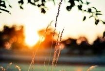 Um lugar ao sol.