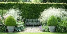 Gardens, Gardening Ideas & Conservatories / Great ideas and beautiful gardens
