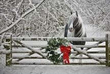'Tis the Season / Let The Cheshire Horse inspire you during this magical time of year! / by Cheshire Horse