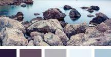 Colour Schemes / Great colour schemes