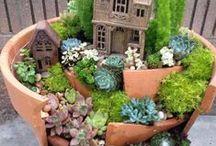Garden, garden...