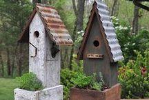 For the Birds...and the Garden / by Mary Ricciuto