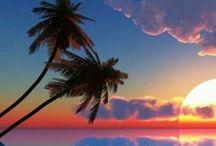 HAWAII / by Ruth Siedlicki