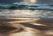 My Oceans