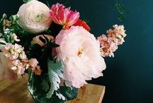 A Bouquet / Flowers, wedding bouquets, centerpieces  / by Samantha Speer ~Sweet Jeanie Cakes ~