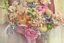 Flowers ~ Plants ~ Trees