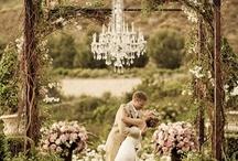 Fairytale Wedding / by Cassie Bosma