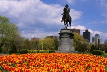 Travel | Boston / Places to visit, things to do and foods to eat in Boston.