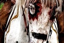 Wild West / by Steve Bonham