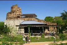 Travel | Texas / Places to visit deep in the heart of Texas!