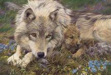 Art - Wildlife - Wolves & Kin