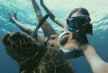 Inside Waterworld / Underwater World  / by Carlota Fernandez de Sousa