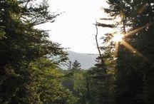 Travel | New Hampshire