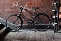 bicycles  / by Elizabeth Minchilli