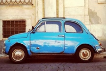fiat 500 / by Elizabeth Minchilli