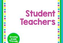 Student Teacher / Mentoring and support for student teachers.
