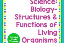 Science: Structures & Functions of Living Organisms / Elementary and middle grades resources, lessons, projects, worksheets, and printables for Science: Structures & Functions of Living Organisms.