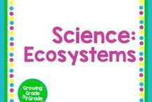 Science: Ecosystems / Elementary and middle grades resources, lessons, projects, worksheets, and printables for Science: Ecosystems