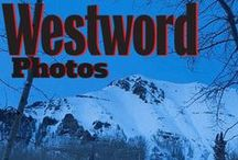 Lifestyle / by Denver Westword