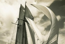 Harnessing the Wind / by Branden McDonald