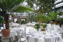 Client:  Blair and Shanti / Garfield Park Conservatory