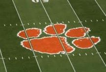 Tiger Pride / Clemson University Tigers