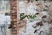 Street Art | Grafitti | Intervention