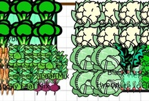 My Garden Inspirations / by Deanne Schweitzer's Design Snap Happy