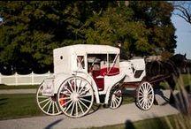 Wedding Ideas / by The Farmhouse Weddings LLC