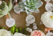 Shabby chic weddings / Shabby chic, rustic & vintage inspired wedding ideas. #shabby chic #weddings #shabby chic weddings #wedding decorations / by Toad Lily