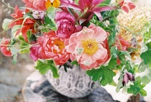 Beautiful flowers / Beautful flowers and floral displays to brighten your day / by Toad Lily