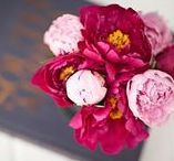 FLOWERS / Flower inspiration. Beautiful flowers for everyday or special occasions.